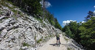 Vodena kolesarska tura po Nanoški planoti